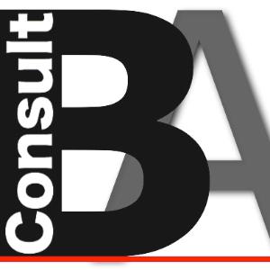 BA Consult Srl